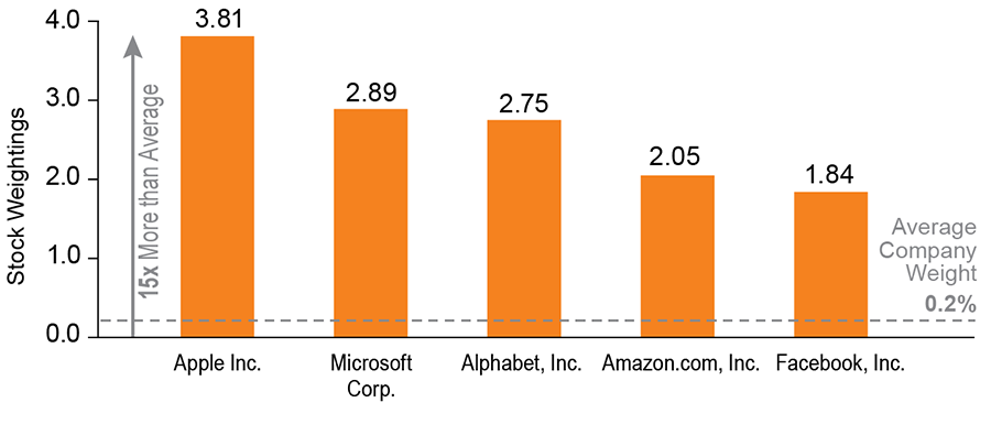 The S&P 500 is Dominated by the Largest Companies