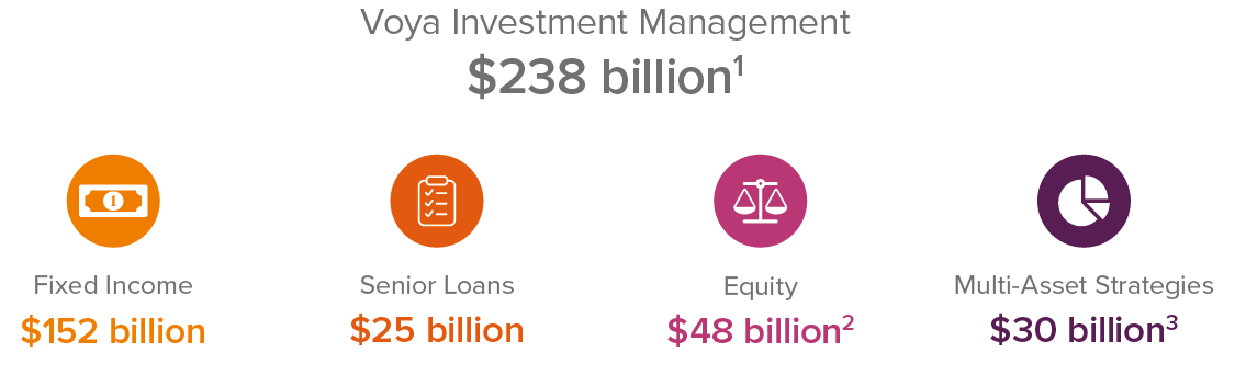 Voya Investment Management AUM